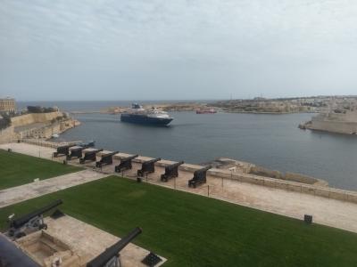 Malta Salwa
